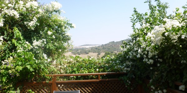 HaChavazelet Street | View - Cottage for Sale in Nofei Aviv