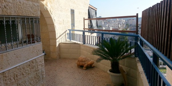 Nachal Lachish | Entry - Apartment for Sale